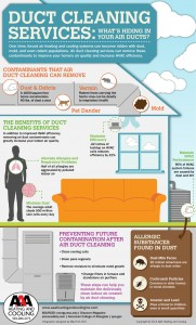 Duct cleaning infographic