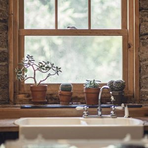 Kitchen-window-with-cactus-on-sill